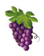 Cultivo de Vides frutimesa